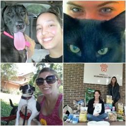 Mary Wright, Wright Pet Care, Dog Walking Gulf Breeze, pet sitter pensacola, pet sitter navarre